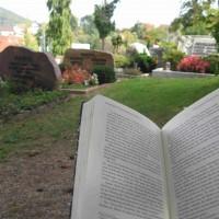 Ein ruhiger Platz zum Lesen ...