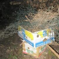 [:de]Diese Zäune haben wir ausgegraben[:en]We dug thes fences out of the hades
