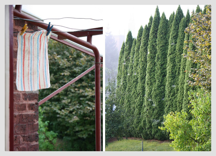 Schlicht und zweckmäßig:  Wäscheleine und Sichtschutz im Garten