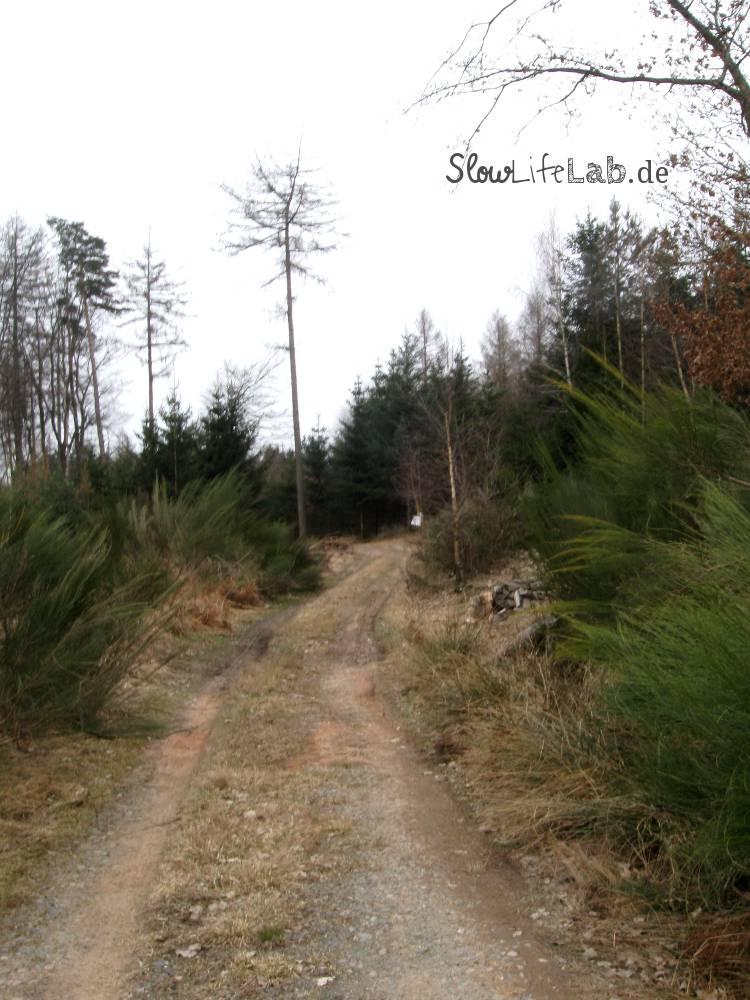 Der Main-Stromberg-Weg am Greiner Eck