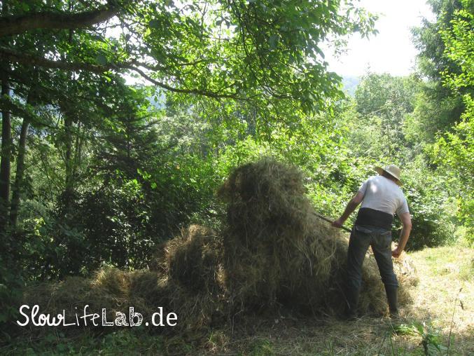 Wer Gras sät, wird Heu ernten
