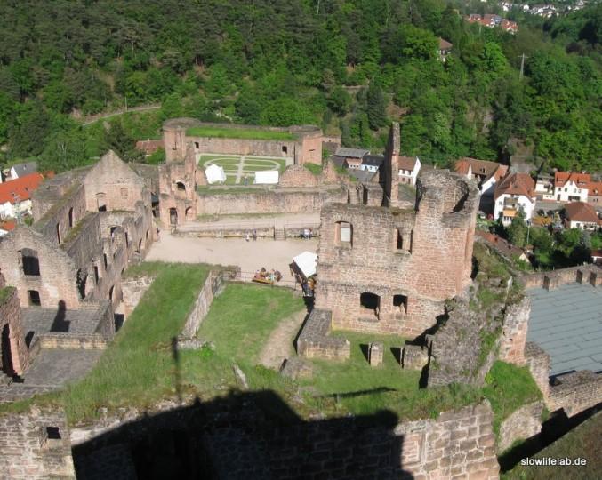 Blick auf das Schloss Hardenburg