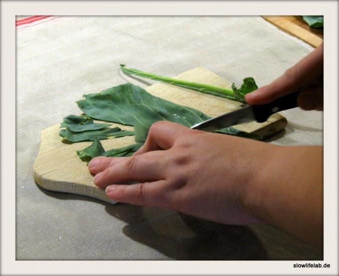 Blätter von der Knolle die Mittelrippe heraustrennen