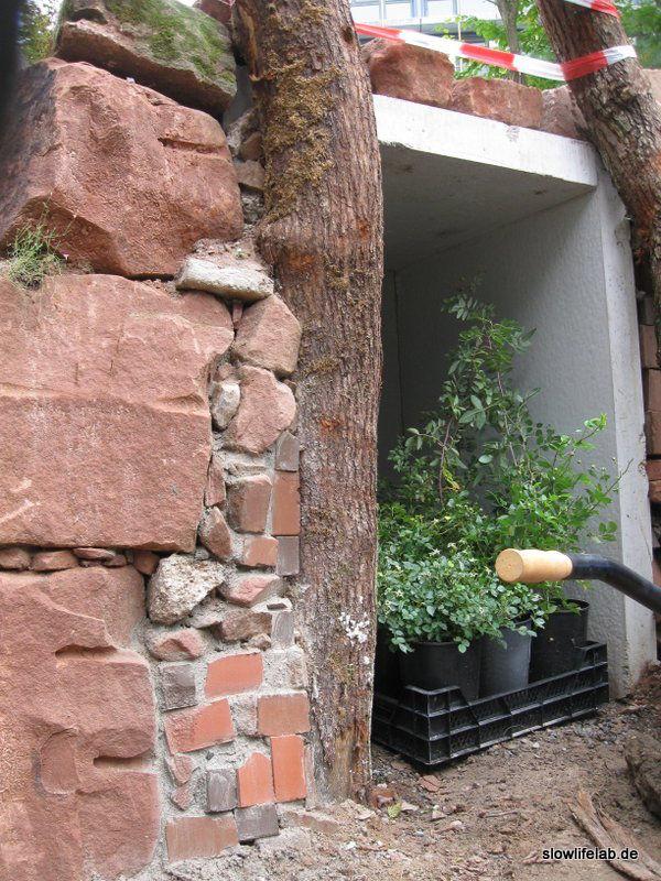 Die Steine schmiegen sich ans von der Natur geformte Holz: So sieht Profiarbeit aus